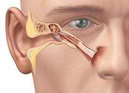 Störung des Druckausgleichs im Ohr - Eustachische Röhre | HNO Dr. Schuster
