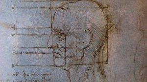 Gesichtsproportionen Leonardo da Vinci | Privatpraxis Dr. Schuster